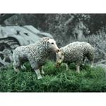 2 Schaafe, set of 2 sheeps 1:35