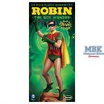 Robin 1966