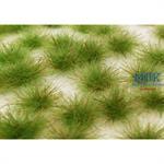 Karstbüschel kurz Beige MINIPACK