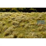 Brachland Spätsommer/ fallow field summer MINIPACK