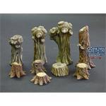 Weiden und Baumstümpfe/ Willows and stumps
