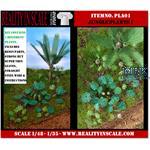 Jungle Plants 01 / Dschungelpflanzen