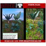 Jungle Plants 02 / Dschungelpflanzen