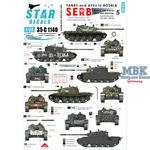 Tanks & AFVs in Bosnia # 5