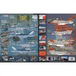 Centannial of US Naval Aviation