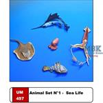 Animal Set #1 - Sea Life