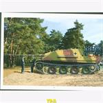 Panther and Jagdpanther in Color