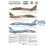 """The Last Active Tomcats - Iranian """"Alicat"""" (F14A)"""