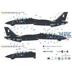 F-14A Tomcat Part.1 VX-4 'Evaluators' - Vandy 1