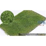 Grasbüschel mit Unkraut 2-6 mm, Sommer