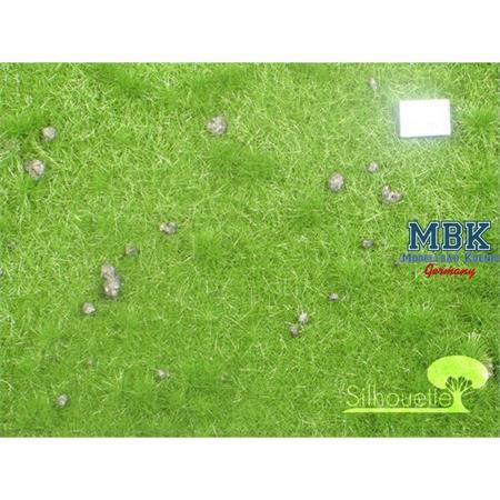 Viehweide mit Maulwurfshügeln, Sommer, 31x50cm