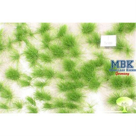 Grasbüschel, sehr lang, Sommer, 42x15cm