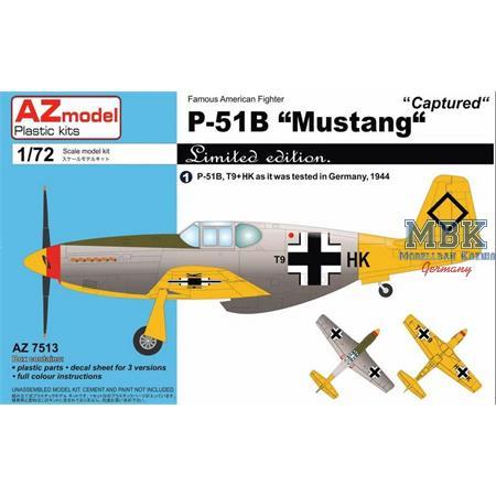 P-51B Mustang Captured