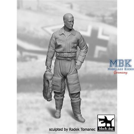 German Luftwaffe Pilot 1940-1945 N°1