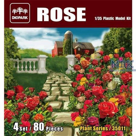 Rosen / Roses Set