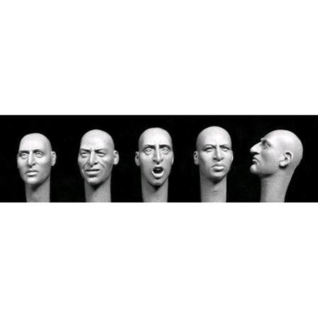 heads with aquiline features