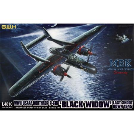 Northrop P-61B Black Widow 'Last Shoot Down 1945'