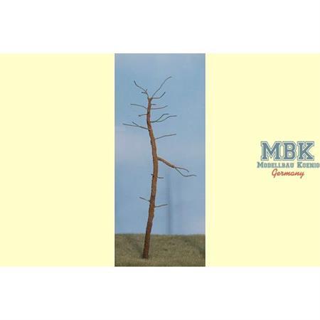 Kiefer B ca. 20 cm  Rohling