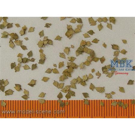 Birkenblätter extra Farben Herbs/Birch leaves 1/35