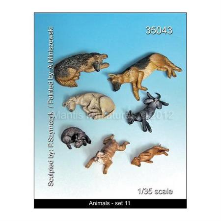 Animals - Set 11