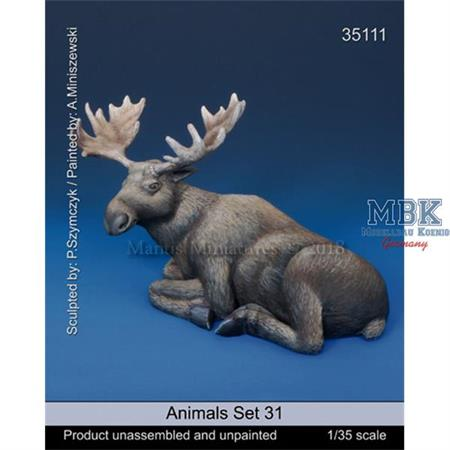 Animals - Set 31