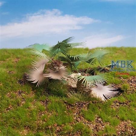 Ground Palm Set 1