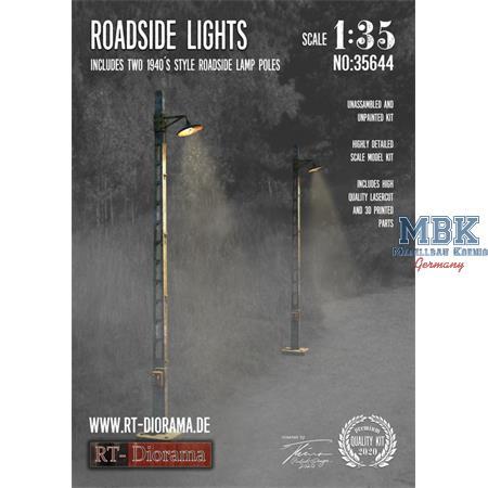 3D Resin Print: Roadside Lights