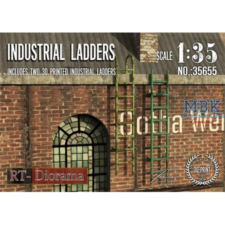 3D Resin Print: Industrial Ladders