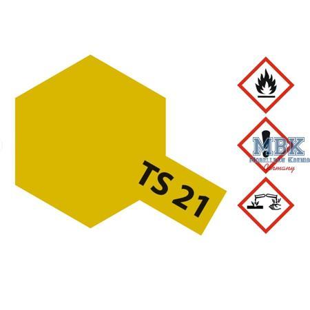 TS21 Gold glänzend -  Spraydose 100ml