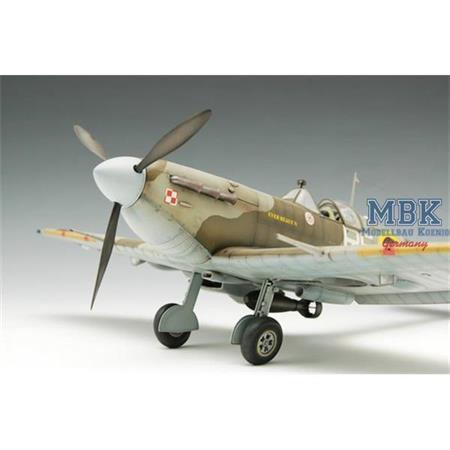 Supermarine Spitfire Mk. Vb in 1:24
