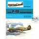 Curtiss P-40 Tomahawk/Warhawk