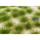 Karstbüschel kurz Frühling MINIPACK