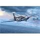 "Breguet Atlantic 1 "" Italian Eagle """